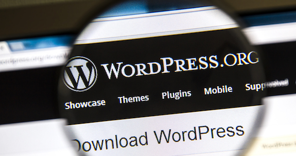 Close-up of WordPress under magnifying glass